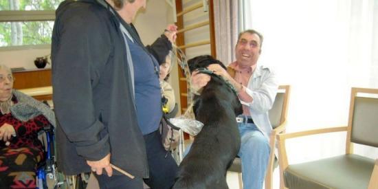 Gaby le rottweiler